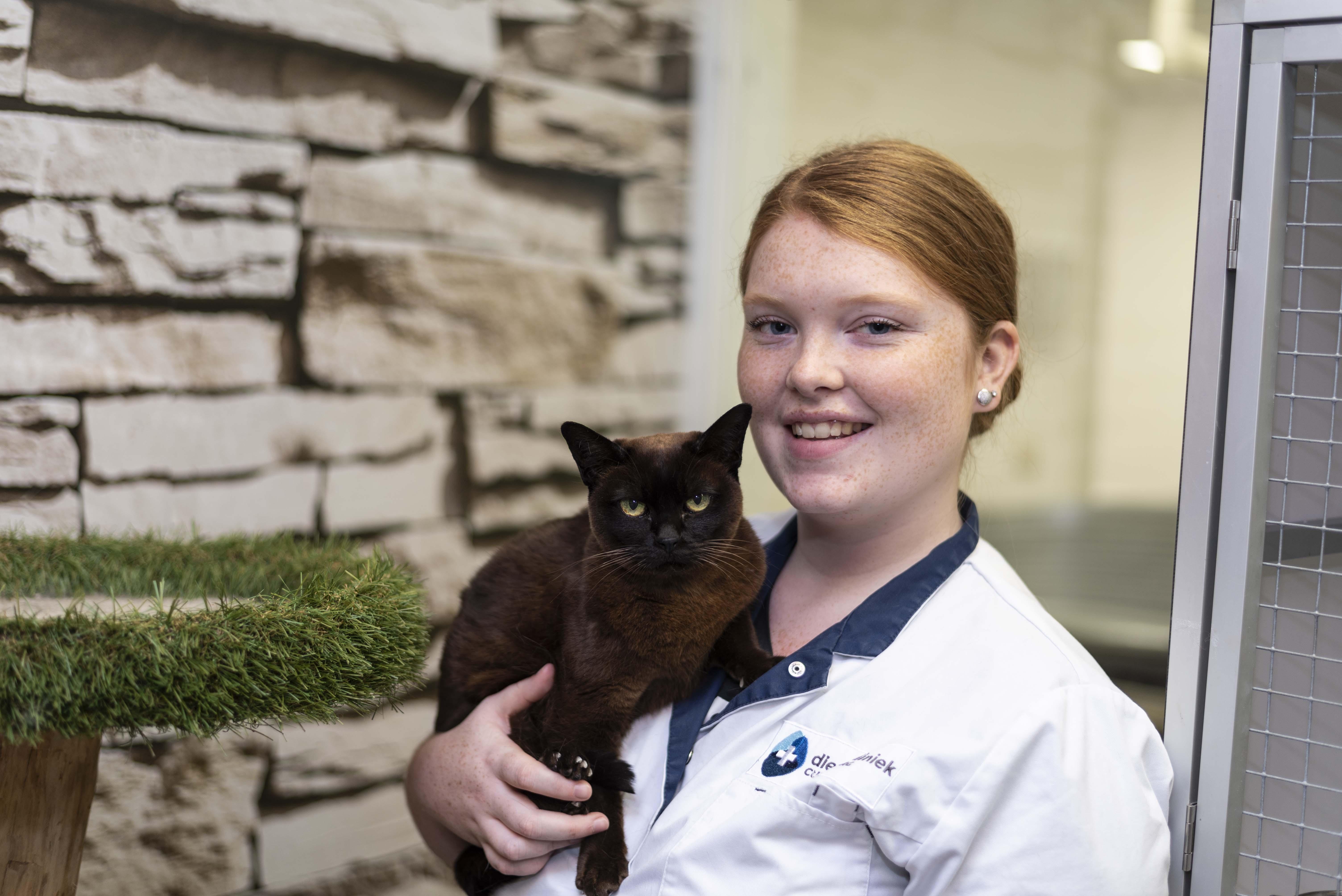 Uw kat wordt met liefde verwend in ons kattenhotel